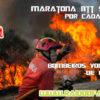 bombeiros voluntarios_1